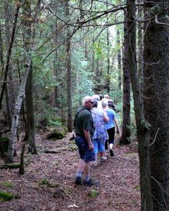 Group hiking Farr Island. The trip around the island is a nice walk for people of all ages. / Un groupe en randonnée dans les sentiers de l'île Farr.