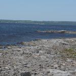 View of Dawson point as you stand on the North end of Farr Island. / Vue de la pointe Dawson à partir du côté nord de l'île Farr