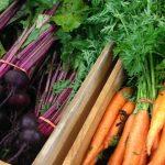 Healthy food - wellness and healthy living, Destination Temiskaming Blog / nourriture de la ferme, bien-être et vivre en santé