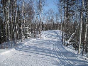 Sentier de ski de fond au club Temiskaming Nordique
