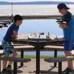Apprendre l'art des échecs avec une expérience Temiskaming