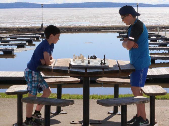 L' art des échecs