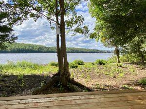 Vue du lac Temiskaming de al tente du frêne noir